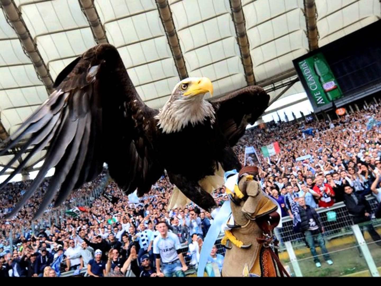 Vultur Lazio